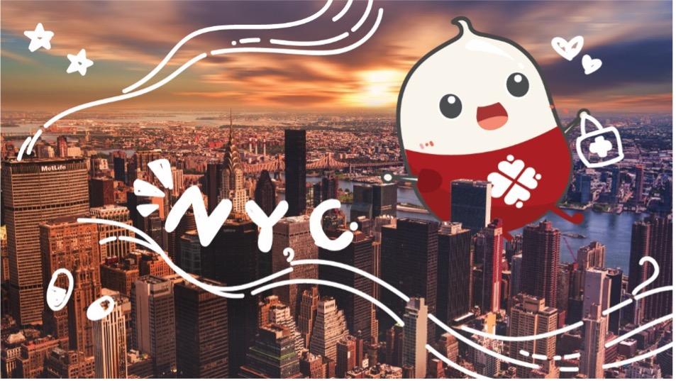 blog NYU banner