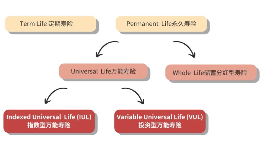 life insurance details